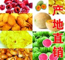 水果干果图片