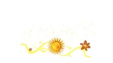 花纹动画设计