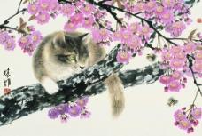 猫趣(高清)图片
