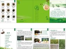 茶叶折页图片