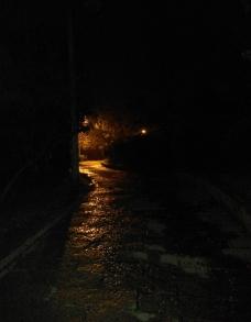 黑夜林间小路图片