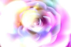 玫瑰效果视频素材
