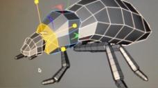 甲壳虫视频素材