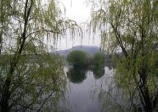 桃子湖雨景图片