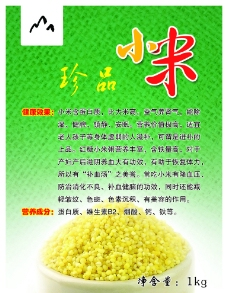 粮食  小米图片