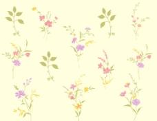 植物背景纹理素材图片