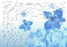 立体方块矢量兰花蓝色花卉图片