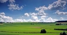 草原天空图片