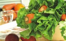 胡萝卜 蔬菜图片