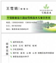 园林绿化名片图片