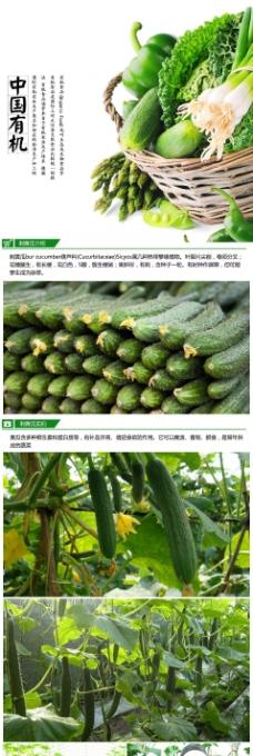 有機蔬菜蔬菜類設計高清PSD源文件下載