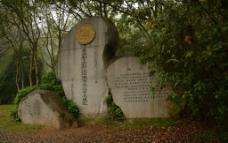标志石碑图片