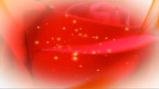 红玫瑰特效视频素材