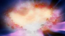 婚庆玫瑰视频素材
