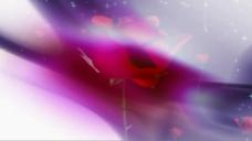 玫瑰特效视频素材