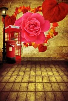 花卉場景設計圖片