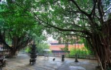 漳州南山寺图片