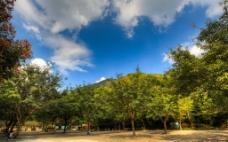 福州国家森林公园图片