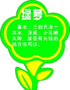 花卉养殖方法图片