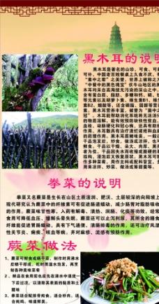 野生黑木耳 拳菜 蕨菜图片