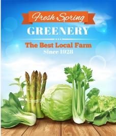 绿色蔬菜矢量宣传海报