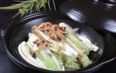 砂锅娃娃菜图片