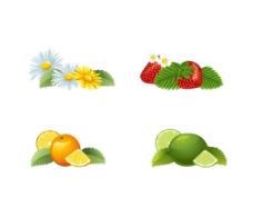 花朵 水果图片