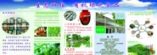 农场折页图片