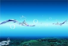 海底海澡水泡