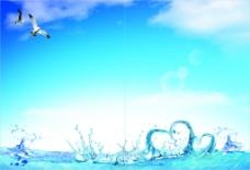 海面鱼水心形海鸥