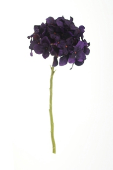 塑胶花卉图片