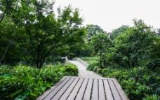 茅家埠景区图片