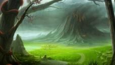 树林草地自然图片