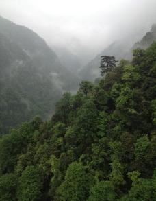 武陵山图片