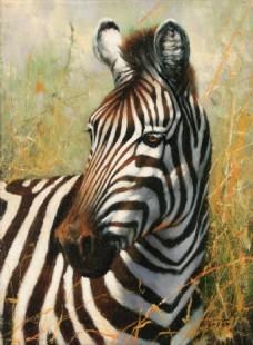 动物 装饰画 高清素材