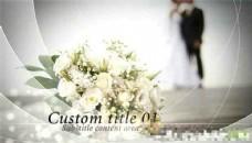唯美婚庆图片展示AE模板