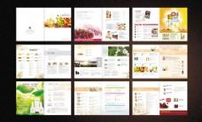 绿色食品画册设计矢量素材
