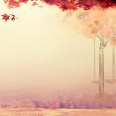 秋季风景主图