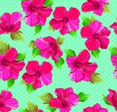 花朵 背景图片