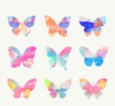 混色蝴蝶矢量图片