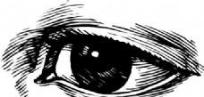 眼睛眼神 矢量素材 EPS_0010