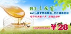 野生蜂蜜海报图片