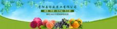 是关于水果设计的网站banner