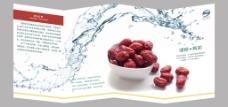 若羌红枣有机食品宣传册折叠风琴册
