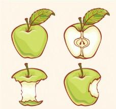4款彩绘青苹果设计矢量图
