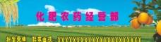 农业展架图片