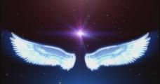婚礼天使翅膀