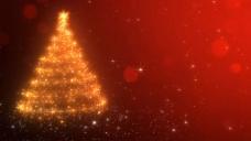 圣诞树视频素材