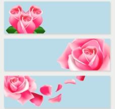 3款粉色玫瑰banner矢量素材