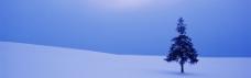 冬天雪景背景图片素材 (27)